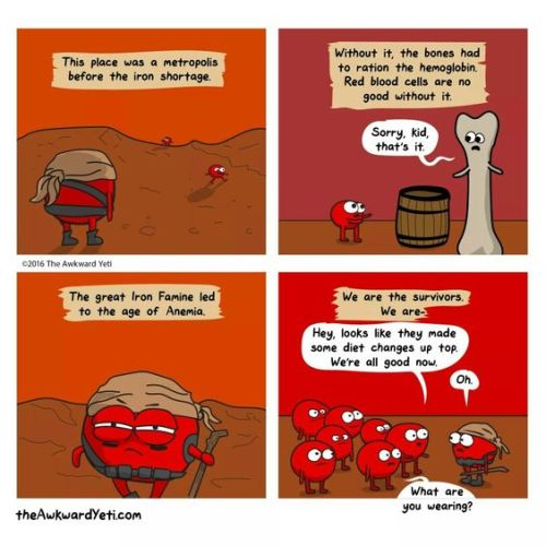 awkward yeti iron deficiency